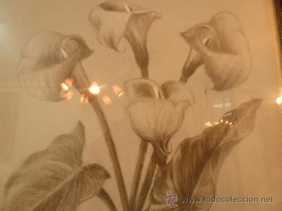 Arte: dibujo flores - Foto 5 - 37007591