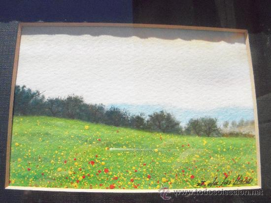 Arte: bonito dibujo, incluye marco - Foto 2 - 37506073