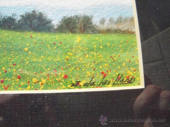 Arte: bonito dibujo, incluye marco - Foto 3 - 37506073