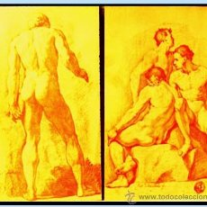 Arte: MICHEL, ROBERTO (1721-1786) COLECCION DE ACADEMIASDIBUJADAS AL NATURAL. F.N.M.T.. Lote 38369044