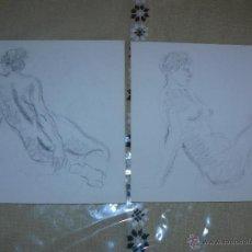 Arte: DIBUJO A LÁPIZ Y CARBONCILLO - DESNUDOS FEMENINOS - F. Lote 39416270