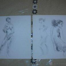 Arte: DIBUJO A LÁPIZ Y CARBONCILLO - DESNUDOS FEMENINOS - J. Lote 39416429