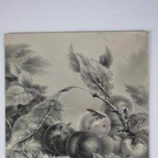 Arte: DIBUJO A LÁPIZ Y PASTEL, DE EXTRAORDINARIA CALIDAD TÉCNICA , BODEGÓN, MEDIADOS S. XIX. Lote 39871555