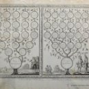 Arte: PHELIPE PALOTA / LAMBERTUS CAUSE.DIBUJANTE Y GRABADOR. 1705.GENEALOGIA DE FELIPE IIº Y ENRIQUE IVº.. Lote 40170074