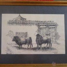 Arte: TOROS, TAUROMAQUIA, PRECIOSO DIBUJO A PLUMILLA, TOROS EN EL CORRAL FIRMADO, AUTOR, PABLO DE RIAZA. Lote 40896983