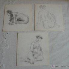 Arte: DIBUJOS A LÁPIZ Y CARBONCILLO - DESNUDOS FEMENINOS (W). Lote 41286549