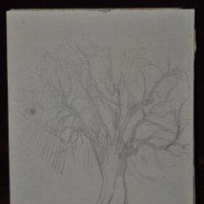 Arte: ALEXANDRE CARDUNETS CAZORLA (BARCELONA, 1871-1944) DIBUJO A LAPIZ. FECHADO DEL 1938. Lote 42754045