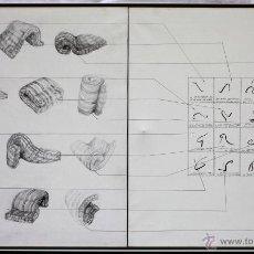 Arte: PILAR PALOMER (BARCELONA 1945) AÑO 1976, ÓLEO SOBRE TELA ENMARCADO 123X76CM. CONCEPTUALISMO 1970'S.. Lote 43093292