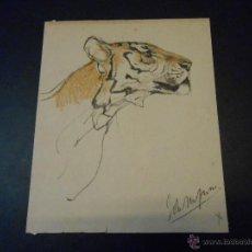 Arte: DIBUJO ORIGINAL PERFIL DE UN TIGRE CON FIRMA ILEGIBLE. Lote 44686257