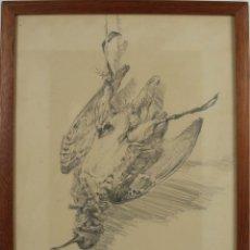 Arte: O1-002 . DIBUJO AL CARBON SOBRE PAPEL. FIRMA ILEGIBLE. 1973.. Lote 45751200