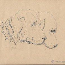 Arte: DIBUJO A PLUMILLA FRANCÉS. S. XIX. PERROS. Lote 46675277