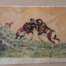 Arte: DIBUJO ORIGINAL DE LA REVISTA ALGO – MAYO 1987. Lote 47715338