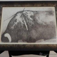 Arte: JOHN ULBRICHT 1926 - 2006. TORO. FIRMADO. TINTA SOBRE PAPEL. PINTOR QUE RESIDIÓ EN MALLORCA. Lote 48322891