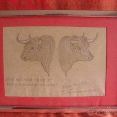 Arte: DIBUJO CABEZAS TOROS FIRMA PEPE CASTILLO 1974 MURCIA. Lote 48540228