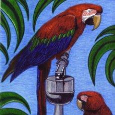 Arte: DIBUJO HIPERREALISTA (AVES). * PAPAGAYOS * (ROTULADOR). DE D. NAVASCUÉS.. Lote 51408763