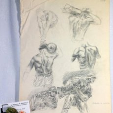 Arte: ESTUDIO DE ESPALDAS. INTERESANTE TRABAJO DE DIBUJO ANTIGUO. Lote 52543304