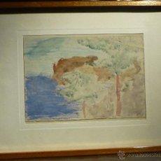 Arte: CALA CON PINOS POR JOAQUIM MIR (1873-1940). EPOCA DE MALLORCA (1899-1903). Lote 52963827
