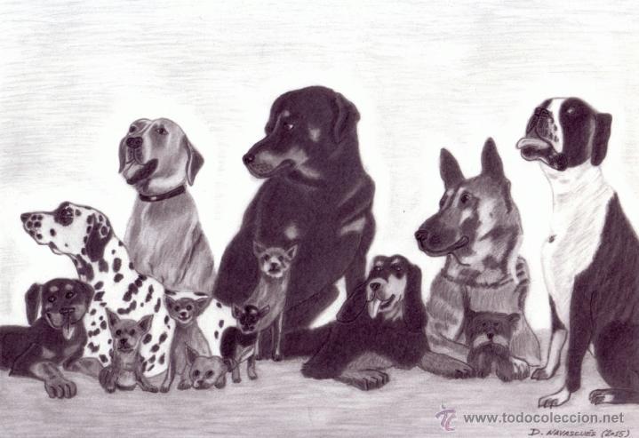 Dibujo Hiperrealista Perros Pandilla Perru Kaufen