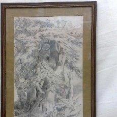 Arte: ANTIGUO DIBUJO A LÁPIZ, FIRMADO, J. BORBOLLA. SIGLO XIX-XX. - EL VIEJO ÁRBOL.-. Lote 28879171
