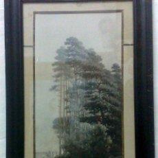 Arte: SIGLO XIX-XX. INTERESANTE DIBUJO A CARBONCILLO Y CLARIÓN..-PAISAJE.- ENMARCADO CON CRISTAL.. Lote 28900922