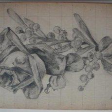 Arte: FLORES/LÁPIZ SOBRE PAPEL . FIRMADO. Lote 38282127
