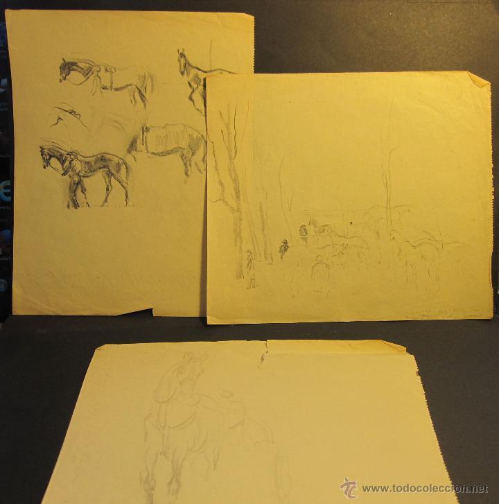 PERE YNGLADA SALLENT. TRES DIBUJO A LÁPIZ. CABALLOS. 21 X 17 CM / 18 X 20 CM (Arte - Dibujos - Modernos siglo XIX)
