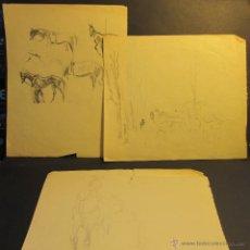 Arte: PERE YNGLADA SALLENT. TRES DIBUJO A LÁPIZ. CABALLOS. 21 X 17 CM / 18 X 20 CM. Lote 54511952