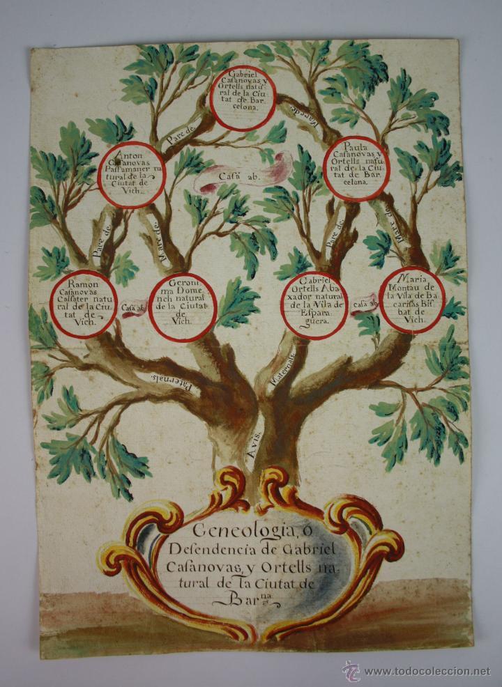 árbol genealógico ciudad de barcelona dibuj comprar dibujos