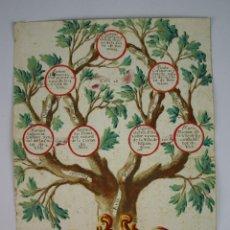Arte: ÁRBOL GENEALÓGICO - CIUDAD DE BARCELONA - DIBUJADO SOBRE PAPEL - SIGLO XVIII. Lote 49322124