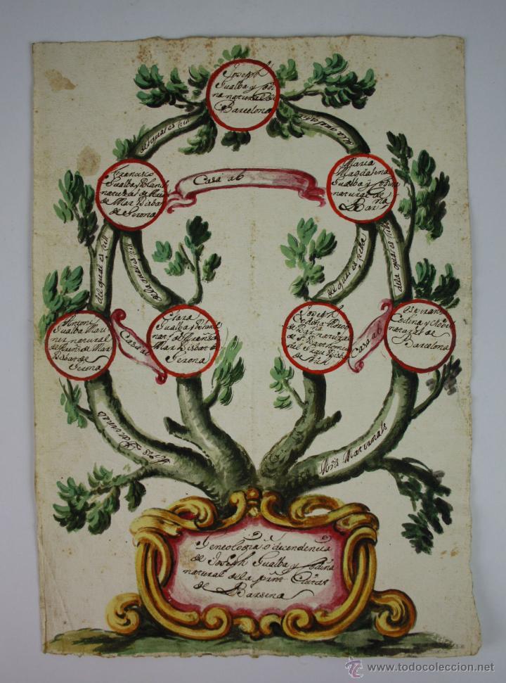 ÁRBOL GENEALÓGICO - CIUDAD DE BARCELONA - DIBUJO COLOREADO - SIGLO XVIII (Arte - Dibujos - Antiguos hasta el siglo XVIII)