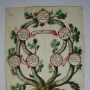 Arte: ÁRBOL GENEALÓGICO - CIUDAD DE BARCELONA - DIBUJO COLOREADO - SIGLO XVIII. Lote 49322215