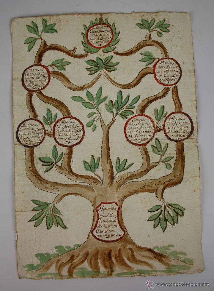 ÁRBOL GENEALÓGICO - CIUDAD DE BARCELONA - DIBUJO COLOREADO - SIGLO XVIII - XIX (Arte - Dibujos - Antiguos hasta el siglo XVIII)