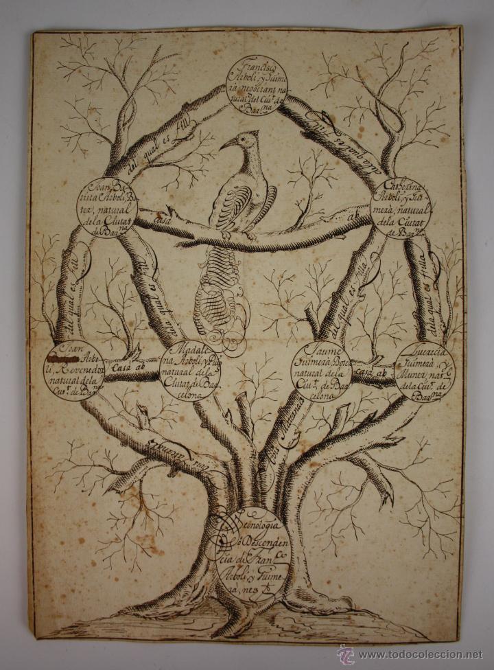 ÁRBOL GENEALÓGICO - CIUDAD DE BARCELONA - DIBUJO A TINTA - SIGLO XVIII - XIX (Arte - Dibujos - Antiguos hasta el siglo XVIII)