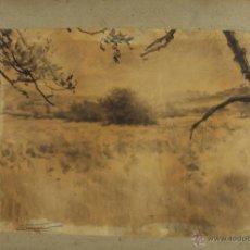 Arte: G-588. DIBUJO AL CARBON SOBRE PAPEL. NICANOR VAZQUEZ UBACH . SIGLO XIX.. Lote 45750194