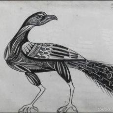 Arte: AVE, FRANCISCO ALCARAZ, ALMERÍA, 1926. Lote 57318895