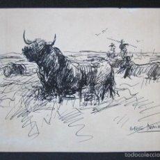 Arte: ROBERTO DOMINGO - DIBUJO ORIGINAL, FIRMADO. TOROS, TAUROMAQUIA. 21,7 X 15,5 CM. Lote 58255122
