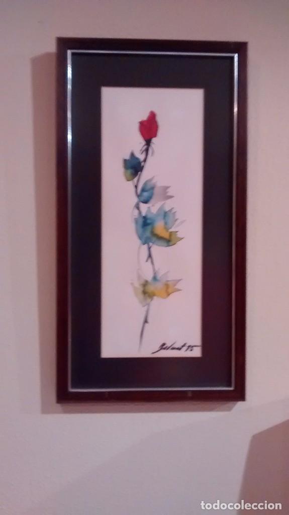 ROSA SANT JORDI (Arte - Dibujos - Contemporáneos siglo XX)
