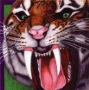 Arte: DIBUJO HIPERREALISTA (ANIMALES VARIOS). * LAS FAUCES DEL TIGRE * (TÉCNICA MIXTA). DE D. NAVASCUÉS.. Lote 73357479