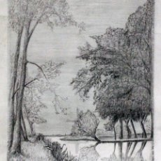 Arte: MEYER, PAISAJE LAGO, ARBOLES, DIBUJO A LAPIZ, FIRMADO, 45X35CM. Lote 77457289