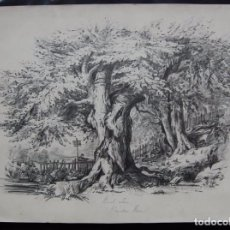 Arte: ESCENA DE CAZA EN WINDSOR FOREST - ORIGINAL SIGLO XIX. Lote 26699526