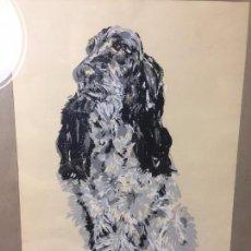 Arte: OBRA A POCHOIR GOUACHE PERRO COCKER SPANIEL INGLES NEGRO BLANCO NO FIRMADA AÑOS 70 42X32,5CMS. Lote 97616303