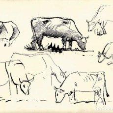Arte: JORDI SAMSÓ | VACAS. Lote 98509687