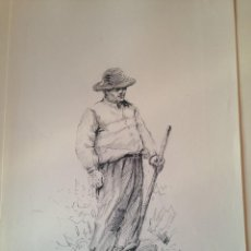 Arte: DIBUJO A TINTA Y LAPIZ ORIGINAL AÑOS 70. PERSONAJE TIPICO MALLORCA, FIRMADO LEMOS. Lote 99702723