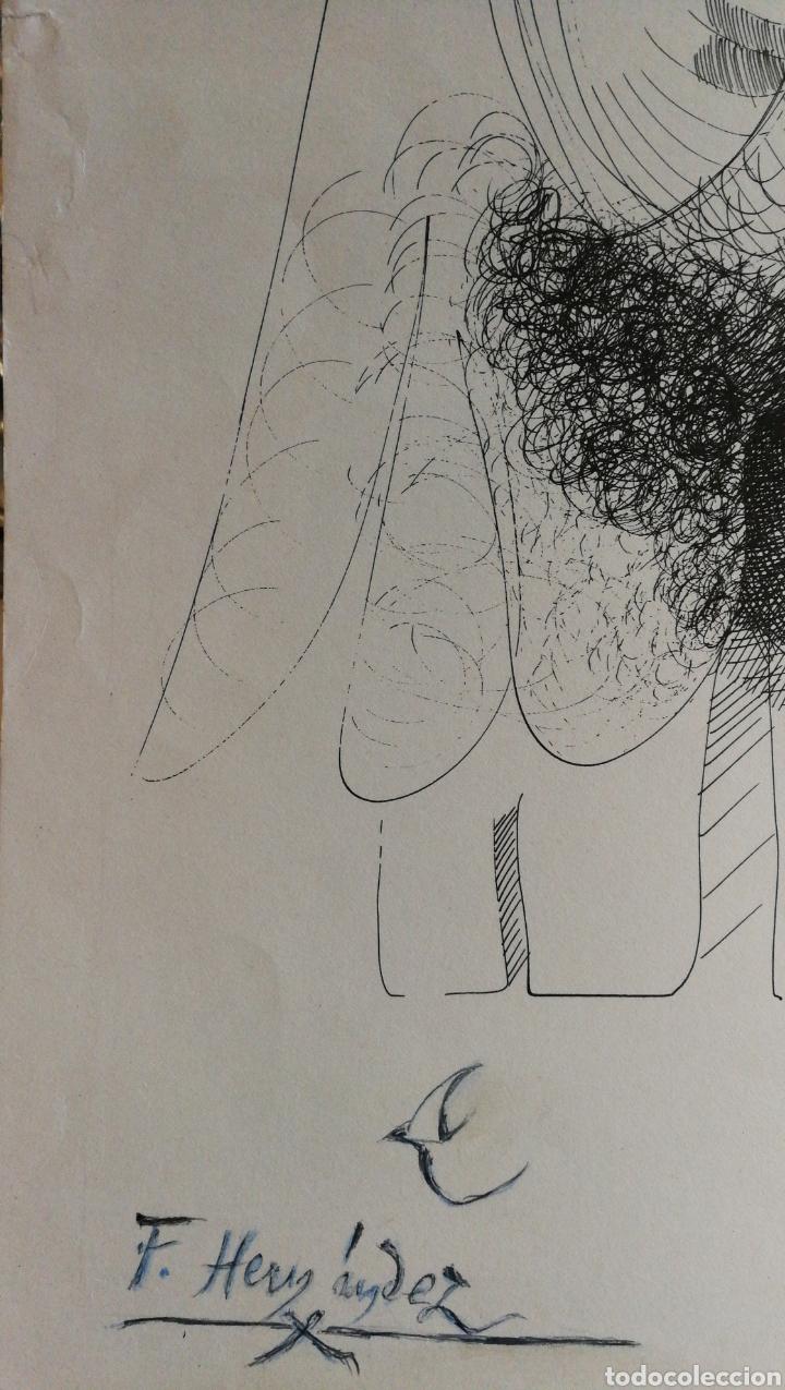 Arte: Paco Hernández / Francisco Hernández dibujo a plumilla - Foto 4 - 100425224