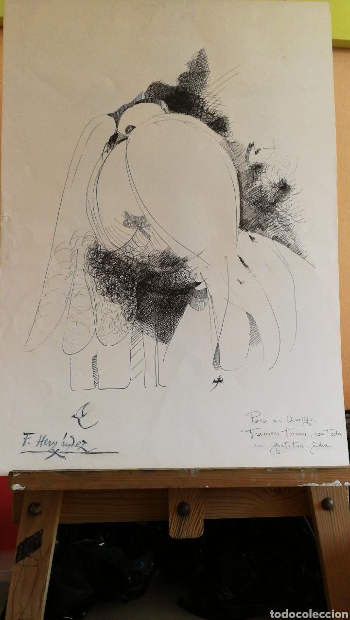 Arte: Paco Hernández / Francisco Hernández dibujo a plumilla - Foto 7 - 100425224