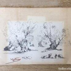 Arte: PRECIOSO DIBUJO DE VENTOSA 1981. Lote 100514951