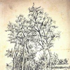 Arte: BOSQUE DE ABEDULES. DIBUJO. TINTA SOBRE PAPEL. FIRMADO R. CARLES. ESPAÑA. 1930. Lote 109459863