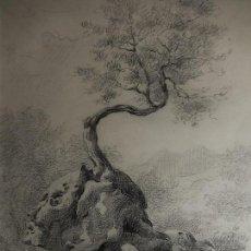 Arte: LÁPIZ SOBRE PAPEL. C. BOSCH. 1938.. Lote 109519023