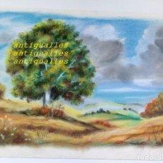 Arte: DIBUJO A PASTEL,CON FIRMA DE AUTOR MARTI/87.MEDIDA:42X31.PINTURA,CUADRO,BELLAS ARTES. Lote 114707679