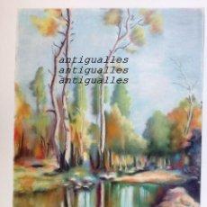 Arte: DIBUJO A PASTEL,CON FIRMA DE AUTOR MARTI/89.MEDIDA:48X36.PINTURA,CUADRO,BELLAS ARTES. Lote 114708575
